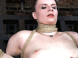 Bounded Sweetie Claire Adams Is Toyed By Her Nasty Mistress